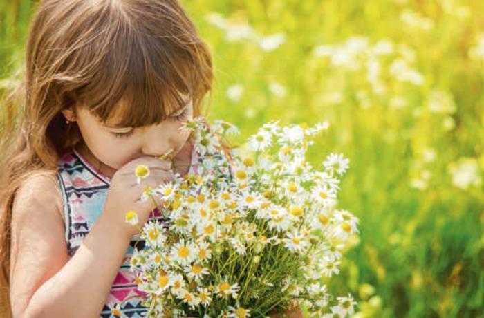 So helfen Sie Ihrem Kind durch die Pollensaison