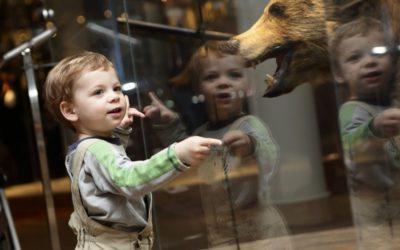 Les musées se mobilisent pour les enfants